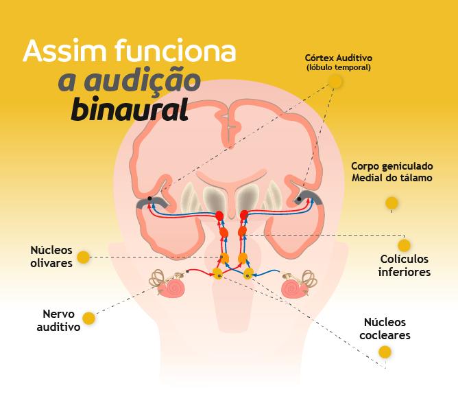 Assim funciona a audição binaural